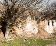 The ruins of an old house in nature Stock Images