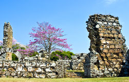 Ruins of Old Panama. Stone ruins of the settlement currently known as Panama Viejo, the old city of Panama, the oldest capital in the Americas, in Panama City Stock Photo
