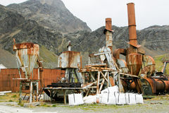 Ruins of old whale oil factory Royalty Free Stock Images