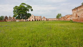 Ruins one of the largest Carthusian monasteries Royalty Free Stock Photography