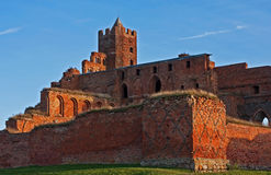 Ruins of Ordensburg castle Royalty Free Stock Images