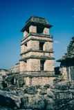 Ruins at the Palenque archeological site, Chiapas, Mexico. royalty free stock images