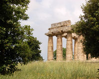 Ruins at Paestum, Italy Stock Photos