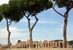 Ruins of the Palatine Hill, Rome Italy Royalty Free Stock Photo