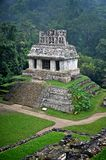 Ruins at Palenque. Ruins i the jungle at Palenque in Mexico Royalty Free Stock Photo