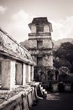 Ruins at the Palenque archeological site, Chiapas, Mexico. royalty free stock photo