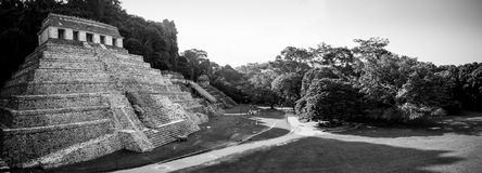 Ruins at the Palenque archeological site, Chiapas, Mexico. stock image