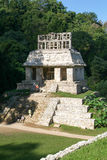 Ruins of Palenque, Maya city in Chiapas, Mexico Royalty Free Stock Images