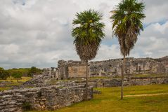 Ruins and palm trees in the archaeological area. Tulum, Mexico, Yucatan, Riviera Maya.  royalty free stock photo