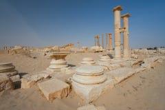 Ruins of Palmira Royalty Free Stock Photo
