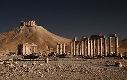 Ruins in Palmyra Stock Photography