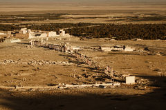 Ruins in Palmyra Royalty Free Stock Photos