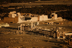 Ruins in Palmyra Stock Images