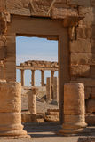 Ruins of palmyra Stock Photos