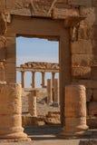 Ruins of palmyra. Ruins of the ancient aramaic city of palmyra (tadmor) in central syria stock photos