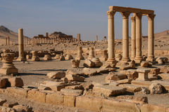 Ruins of palmyra. Ruins of the ancient aramaic city of palmyra (tadmor) in central syria stock images