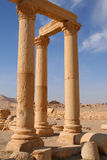 Ruins of palmyra Royalty Free Stock Photo
