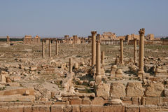 Ruins of palmyra. Ruins of the ancient aramaic city of palmyra (tadmor) in central syria royalty free stock images