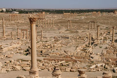 Ruins of palmyra. Ruins of the ancient aramaic city of palmyra (tadmor) in central syria royalty free stock photos