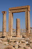 Ruins of palmyra. The ruins of the ancient aramaic city of palmyra (tadmor) in central syrian royalty free stock images