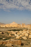 Ruins of Palmyra and Qala'At Ibn Maan Castle Royalty Free Stock Photography