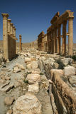 Ruins of Palmyra, Syria Stock Images
