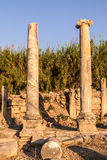 Ruins at Perge, Turkey Stock Images