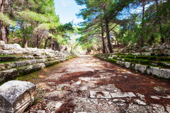 Ruins of Phaselis Turkey Stock Images