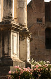 Ruins of a portico of an ancient Roman temple Stock Images