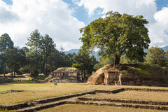 Ruins of the pre-hispanic Mayan town Iximche. Guatemala Stock Images