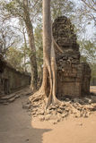 Ruins of Preah Khan, Angkor Thom, Cambodia with overgrown trees Stock Photo