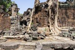 Ruins of Preah Khan Royalty Free Stock Images