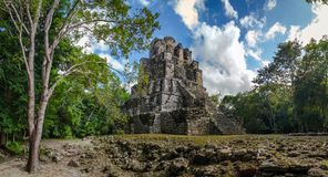 Landscape panorama of Ancient Mayan pyramid temple complex in Muyil, Yucatan Mexico royalty free stock photo