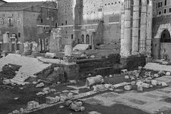 The ruins and remains of the Roman Forum in Rome. Italy Royalty Free Stock Photos