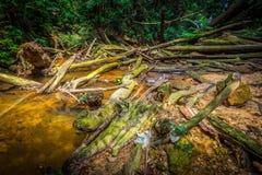 Ruins of river. This photo was shot at Kota Tinggi of Malaysia Stock Photo