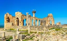 Ruins of a roman basilica at Volubilis, Morocco Royalty Free Stock Image