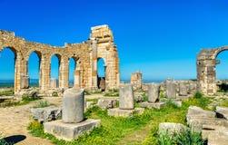 Ruins of a roman basilica at Volubilis, Morocco Stock Photos