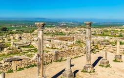 Ruins of a roman basilica at Volubilis, Morocco Stock Photography