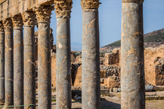 Ruins Roman Capitol Thuburbo Majus, Tunisia Royalty Free Stock Photography