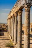 Ruins Roman Capitol Thuburbo Majus, Tunisia Royalty Free Stock Photos