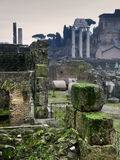 Ruins in the Roman Forum. Moldy stones in the Roma Forum Royalty Free Stock Photos