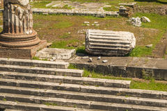 The Ruins of the Roman Forum. Columns at Trajan's Marketplace across from the Forum Royalty Free Stock Photos