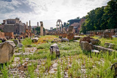 The ruins of the Roman Forum in Rome Stock Image