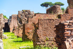 The ruins of the Roman Forum in Rome Royalty Free Stock Photo