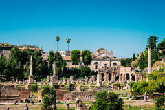 Ruins of the Roman Forum, Rome Royalty Free Stock Photo