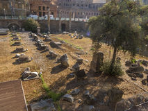 Ruins at the Roman Forum of Trajan Stock Image