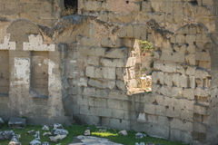 The Ruins of the Roman Forum. Trajan's Marketplace across from the Forum Royalty Free Stock Images
