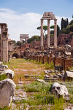 Ruins at Roman forum vertical view at Rome Royalty Free Stock Photography