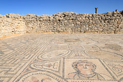 Ruins of the Roman Volubilis city in Morocco Stock Photo