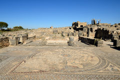 Ruins of the Roman Volubilis city in Morocco Stock Photos